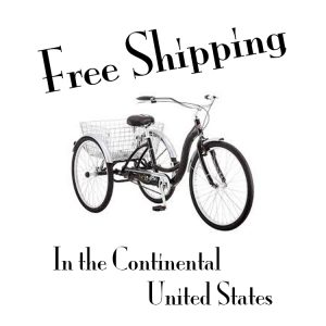 Free Shipping In the continental US for all Kenny G Saxophones